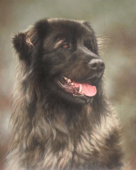 Portret van je huisdier